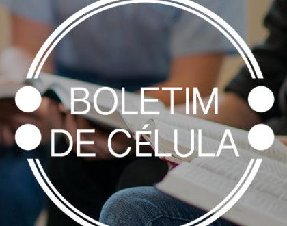 Boletim 292 - Josué: A Conquista Pela Coragem